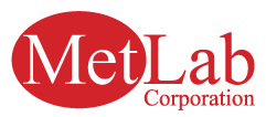 Metlab Corporation